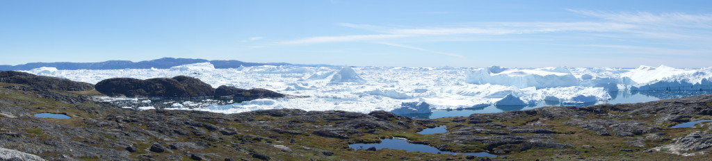 Spectacular Views of Orienteering Terrain and Icebergs