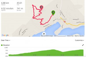 Junior Mens Course as taken from my Garmin. Just a little bit of climb!