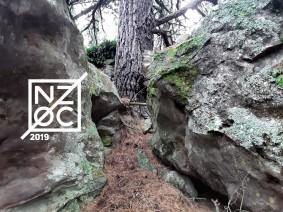 NZ Orienteering Championships in Oamaru at Easter – last orders