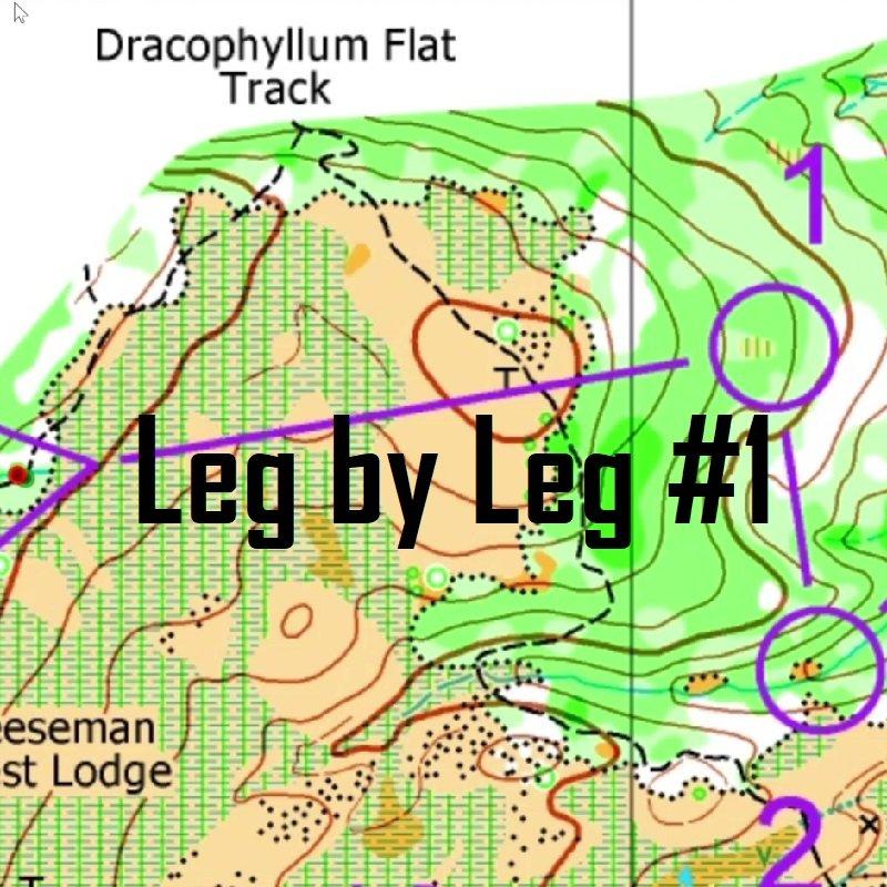 Leg by Leg #1