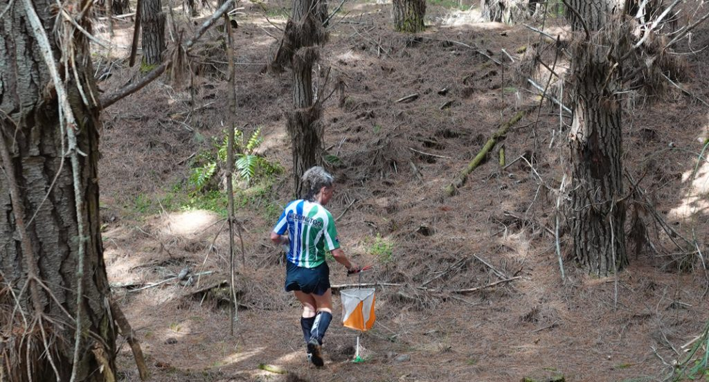 Wellington Orienteer at the National Champs 2020