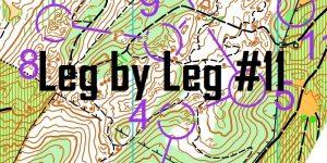 Leg by Leg #11: Slater Road AOS