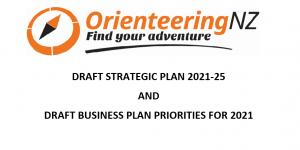 Draft Strategic & Business Plan Feedback