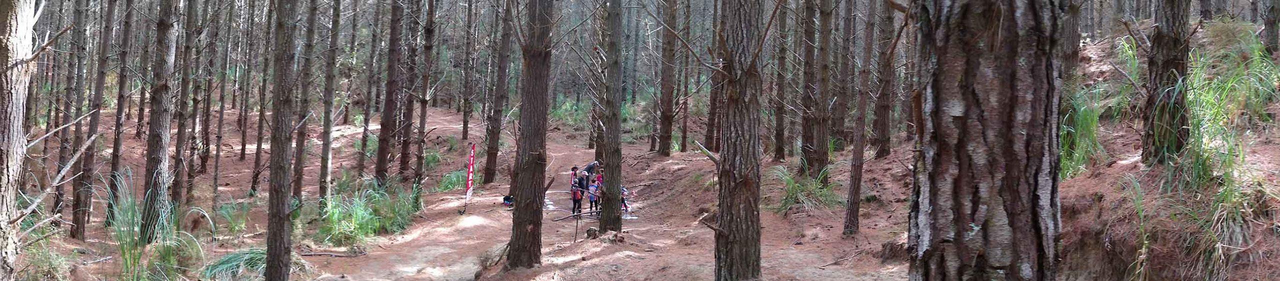 Woodhill Start